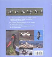 Cigognes (Les) - 4ème de couverture - Format classique