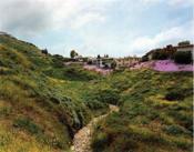 Mark Wyse 18 Landscapes /Anglais - Couverture - Format classique