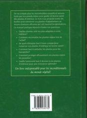 Les Plantes D'Interieur De Grand-Mere - 4ème de couverture - Format classique