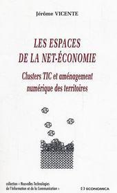Les Espaces De La Net-Economie ; Clusters Tic Et Amenagement Numerique Des Territoires - Intérieur - Format classique