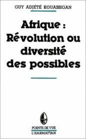 Afrique : révolution et diversité des possibles - Couverture - Format classique
