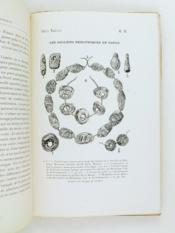 Les Parures préhistoriques et antiques en grains d'enfilage et les colliers Talismans Celto Armoricains précédé d'un aperçu sur les temps préhistoriques. - Couverture - Format classique