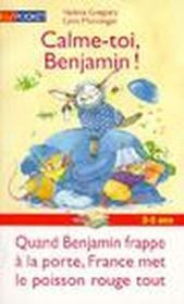 Calme Toi Benjamin - Couverture - Format classique