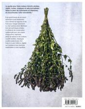 Conserves, fermentations & condiments maison - 4ème de couverture - Format classique