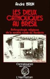 Dieux Catholiques Au Bresilanthropologie Religieuse... - Couverture - Format classique