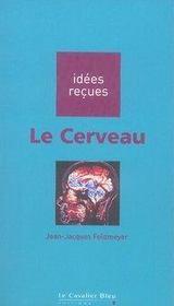 Le cerveau - Intérieur - Format classique