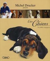 Les chiens ; nos fidèles compagnons - Intérieur - Format classique
