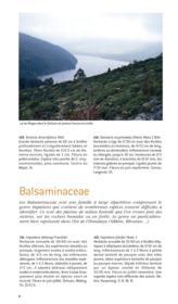 Plantes de l'Himalaya et des montagnes de Chine - Couverture - Format classique