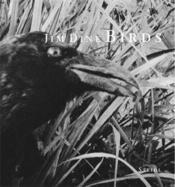 Jim dine birds - Couverture - Format classique