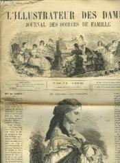 L'Illustrateur Des Dames - Journal Des Soirees De Famille N°45 1re Annee - Couverture - Format classique