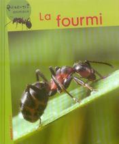 La fourmi - Intérieur - Format classique