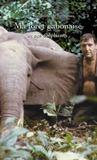 Ma forêt gabonaise et ses éléphants