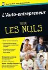 Auto Entrepreneur Pour Les Nuls