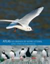 Les oiseaux du littoral