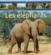 Elephants (Les)