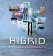 Hibrid. Regards Croises Sur La Peinture Contemporaine En France - Couverture - Format classique
