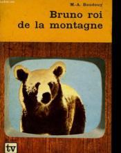 Bruno Roi E La Montagne - Couverture - Format classique