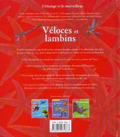 Coureurs Et Rampeurs - 4ème de couverture - Format classique