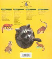 Les ratons laveurs - 4ème de couverture - Format classique
