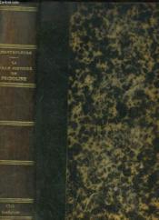 La Folle Histoire De Fridoline - Couverture - Format classique