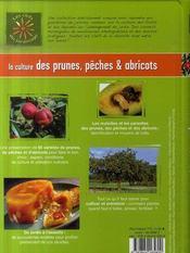 La culture des pêchers, pruniers et abricotiers - 4ème de couverture - Format classique