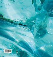 Thérèse Nègre - 4ème de couverture - Format classique