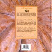 La citrouille ; histoire petites histoires et recettes - 4ème de couverture - Format classique
