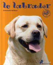 Labrador - Intérieur - Format classique