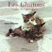 Chatons (Les) - Intérieur - Format classique