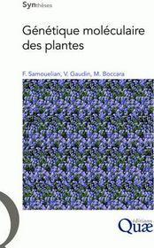 Génétique moléculaire des plantes - Couverture - Format classique