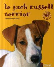 Jack russel terrier - Intérieur - Format classique