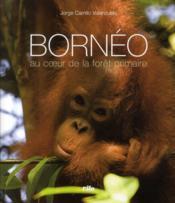 Bornéo ; au cœur de la forêt primaire - Couverture - Format classique