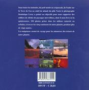 Voyage Autour Du Monde - 4ème de couverture - Format classique