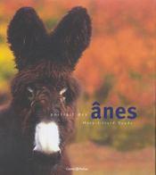 Portrait des ânes - Intérieur - Format classique