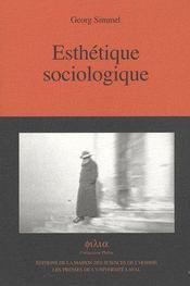 Esthétique sociologique - Intérieur - Format classique