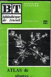 Belle Plante Qui Est-Tu? 290 291 - Couverture - Format classique