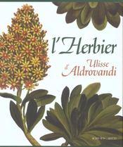 L'Herbier D'Ulisse Aldrovandi - 4ème de couverture - Format classique