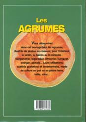 Les Agrumes. Oranges, Citrons, Pamplemousses, Kumquats - 4ème de couverture - Format classique