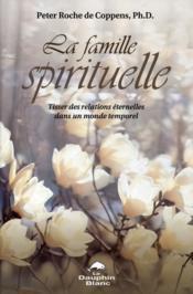 Famille spirituelle ; tisser des relations éternelles dans un monde temporel - Couverture - Format classique