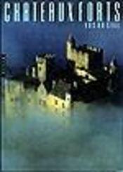 Chateaux forts vus du ciel - Intérieur - Format classique