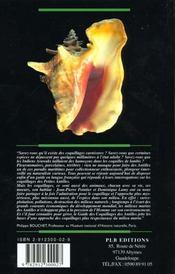 Les coquillages des antilles - 4ème de couverture - Format classique