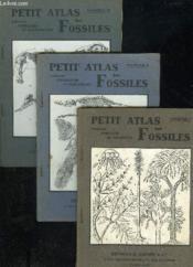 Petit Atlas Des Fossiles - 3 Fascicules - Couverture - Format classique