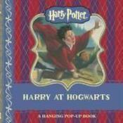 Harry Potter: Harry At Hogwarts Hanging Pop-Up - Couverture - Format classique