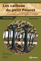 Les cailloux du petit Poucet ; une aventure au pays des sciences - Couverture - Format classique
