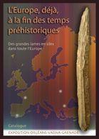 L'europe déjà à la fin des temps préhistoriques ; des grandes lames en silex - Couverture - Format classique