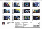 Protéger la perle bleue (Calendrier mural 2017 DIN A4 horizontal) - 4ème de couverture - Format classique