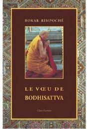 Le voeu de Bodhisattva - Couverture - Format classique
