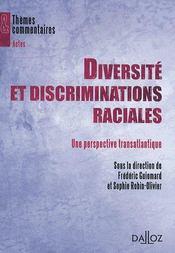 Diversité et discrimination raciale ; une perspective transatlantique - Couverture - Format classique