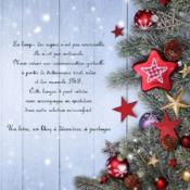 Noël ; imagier en Langue des Signes Françaises - 4ème de couverture - Format classique