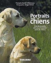 Portraits de chiens - Intérieur - Format classique